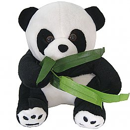 Cute and Lovely Bamboo Leaf Eating Panda
